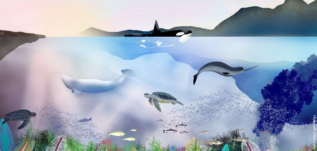 Western Arctic Oceans Day. Inuvialuit Regional Corporation.