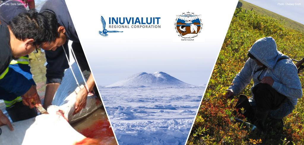 Traditional Knowledge Community Tour will visit all six communities in the Inuvialuit Settlement Region throughout November.